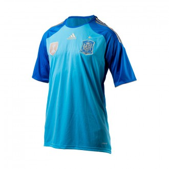 Maillot  adidas Gardien Sélection 2014 Bleu