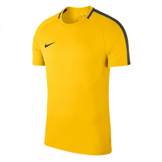 Maillot  Nike Academy 18 Training m/c Tour yellow-Anthracite-Black