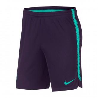 Shorts  Nike FC Barcelona Dry Squad 2018-2019 Purple dynasty-Hyper turquoise