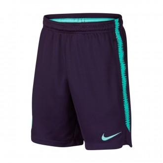 Shorts  Nike Kids FC Barcelona Dry Squad 2018-2019  Purple dynasty-Hyper turquoise