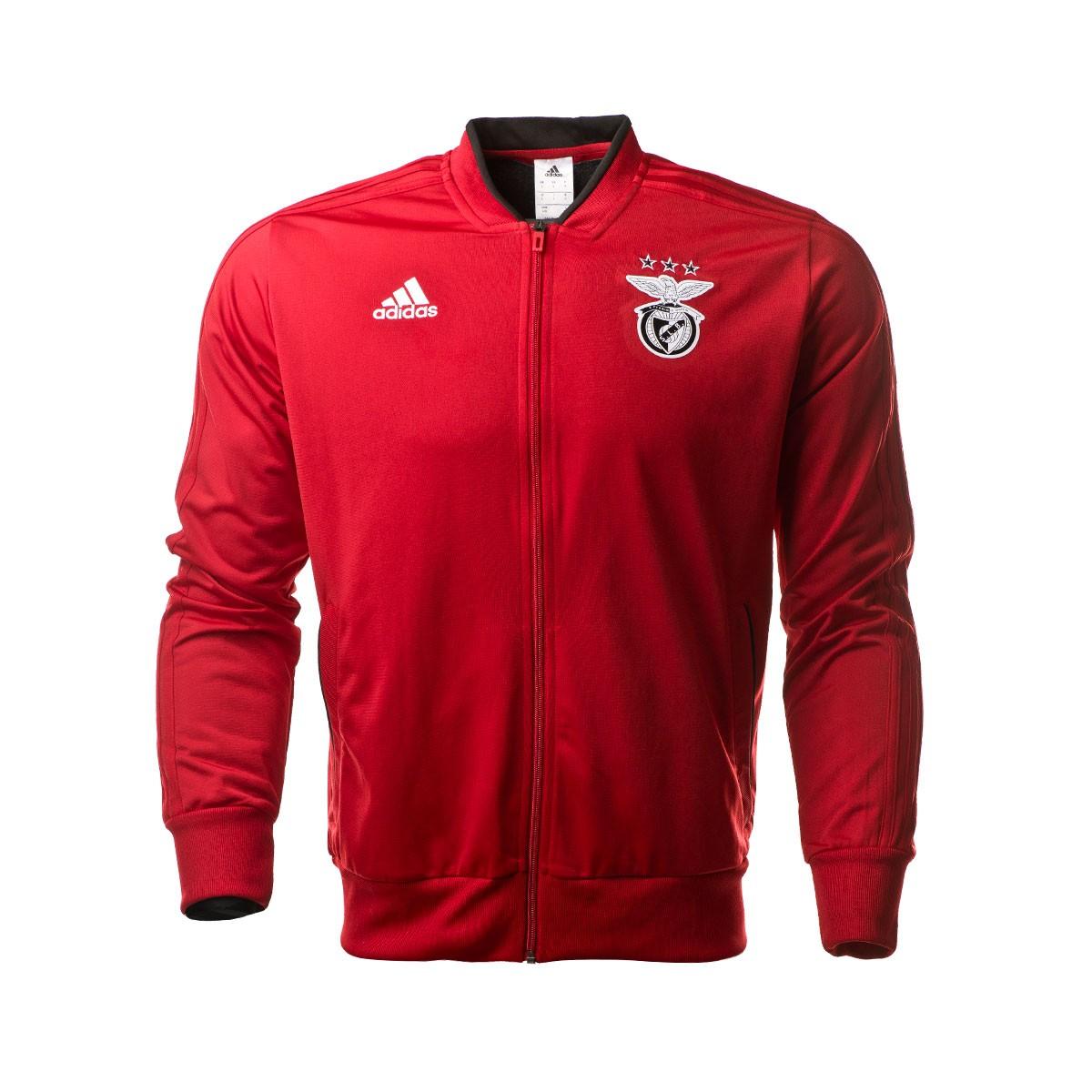 tuta calcio SL Benfica Uomo