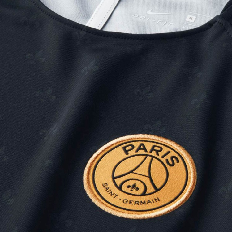 camiseta-nike-paris-saint-germain-squad-2018-2019-nino-black-truly-gold-2.jpg