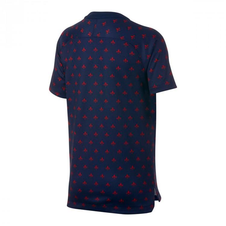 camiseta-nike-paris-saint-germain-squad-2018-2019-nino-midnight-navy-white-1.jpg