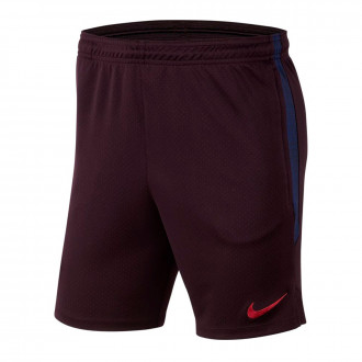 Shorts  Nike FC Barcelona Dry Strike KZ 2019-2020 Burgundy ash-Deep royal blue-Noble red
