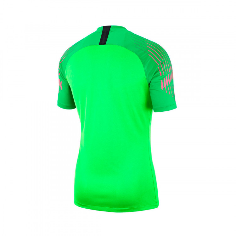 camiseta-nike-gardien-mc-green-strike-green-spark-1.jpg