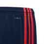 Pantalón corto FC Bayern Munich Tercera Equipación 2019-2020 Niño Collegiate navy-Bright Red