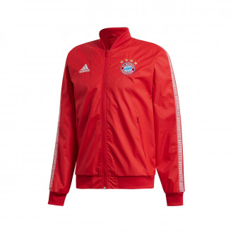 Chaqueta  adidas Bayern Munich Anthem 2019-2020 True red-White