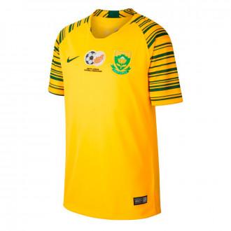 Jersey  Nike Selección South África Primera Equipación 2019-2020 Niño Tour yellow-Gorge green