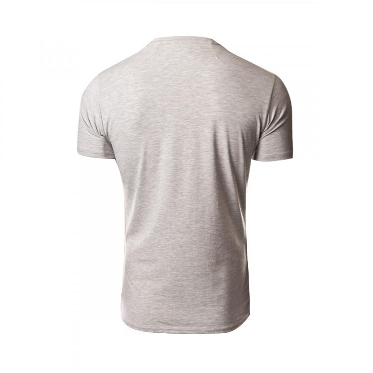 camiseta-new-balance-fc-porto-paseo-graphic-2019-2020-grey-2.jpg