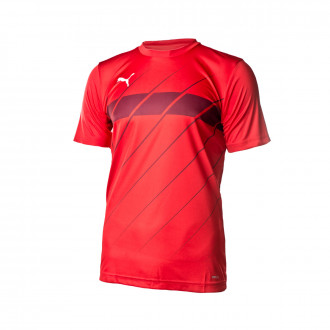 Maglia Puma ftblPLAY Graphic 2019-2020 Puma Red-Burgundy