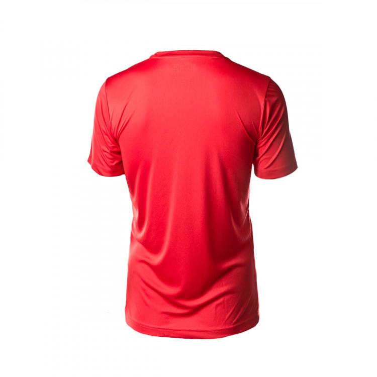camiseta-puma-ftblplay-graphic-2019-2020-puma-red-burgundy-2.jpg
