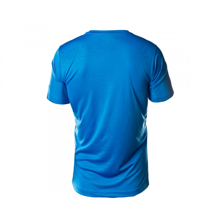 camiseta-puma-ftblplay-graphic-2019-2020-electric-blue-lemonade-puma-new-navy-2.jpg
