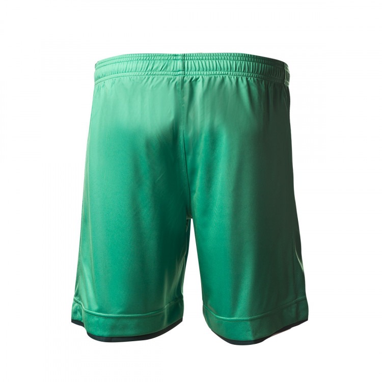 pantalon-corto-macron-real-sociedad-segunda-equipacion-2019-2020-green-1.jpg