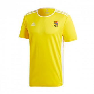 Camisola adidas Entrada 18 m/c AD CA La Guidó 2019-2020 Yellow-White