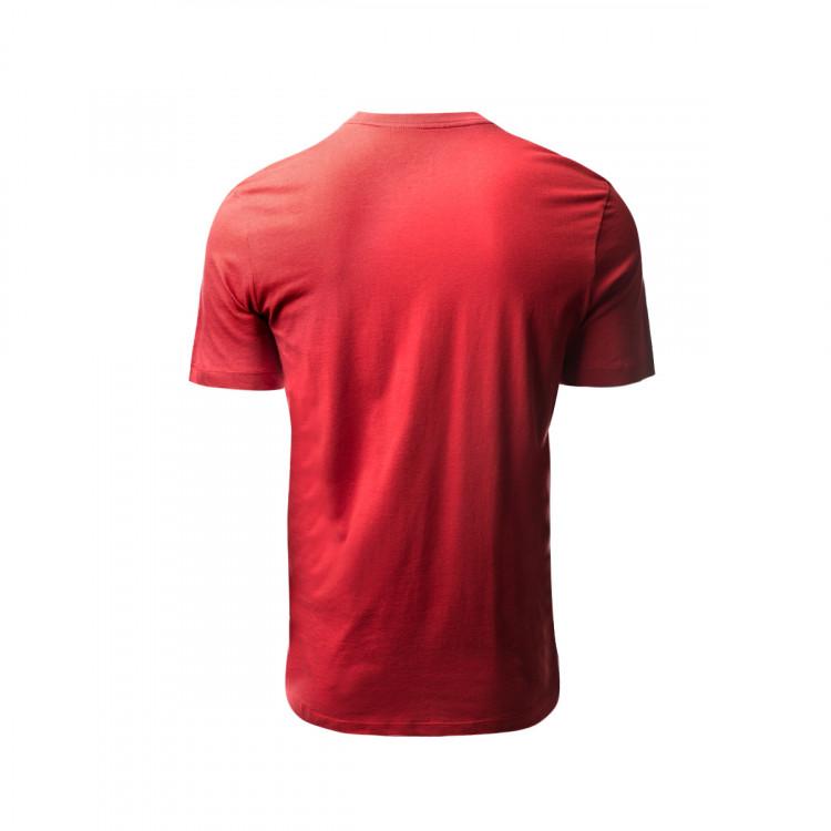 camiseta-nike-galatasaray-sk-evergreen-2019-2020-pepper-red-vivid-orange-2.jpg