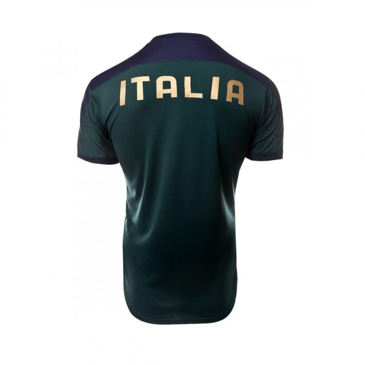 camiseta-puma-italia-training-2019-2020-ponderosa-pine-peacoat-2.jpg