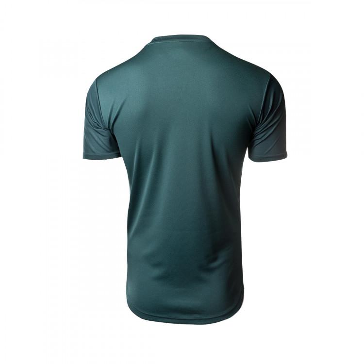 camiseta-puma-italia-stadium-tercera-equipacion-2019-2020-ponderosa-pine-cordovan-2.jpg