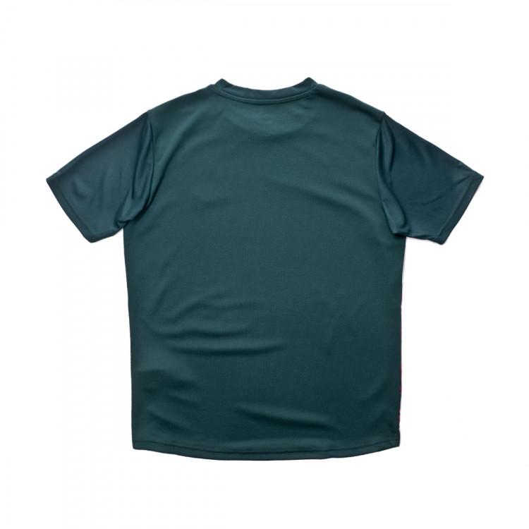 camiseta-puma-italia-stadium-tercera-equipacion-2019-2020-nino-ponderosa-pine-cordovan-1.jpg