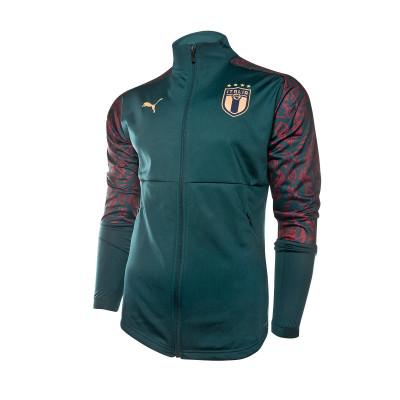chaqueta-puma-italia-stadium-tercera-equipacion-2019-2020-ponderosa-pine-cordovan-0.jpg