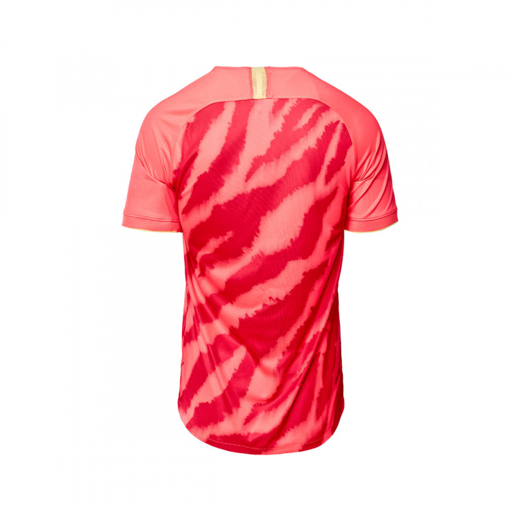 camiseta-nike-guangzhou-evergrande-taobao-fc-breathe-stadium-primera-equipacion-2020-2021-bright-crimson-white-2.jpg
