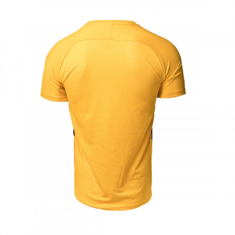 camiseta-nike-industrias-santa-coloma-primera-equipacion-portero-2020-2021-university-gold-2.jpg