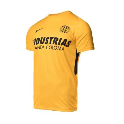 camiseta-nike-industrias-santa-coloma-primera-equipacion-portero-2020-2021-university-gold-0.jpg