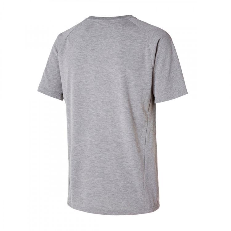 camiseta-puma-neymar-jr-evostripe-medium-gray-heather-1.jpg