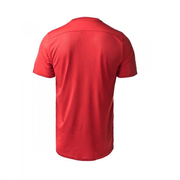 camiseta-nike-industrias-santa-coloma-segunda-equipacion-2020-2021-red-2.jpg