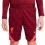 Liverpool FC Training 2021-2022 Niño Team red