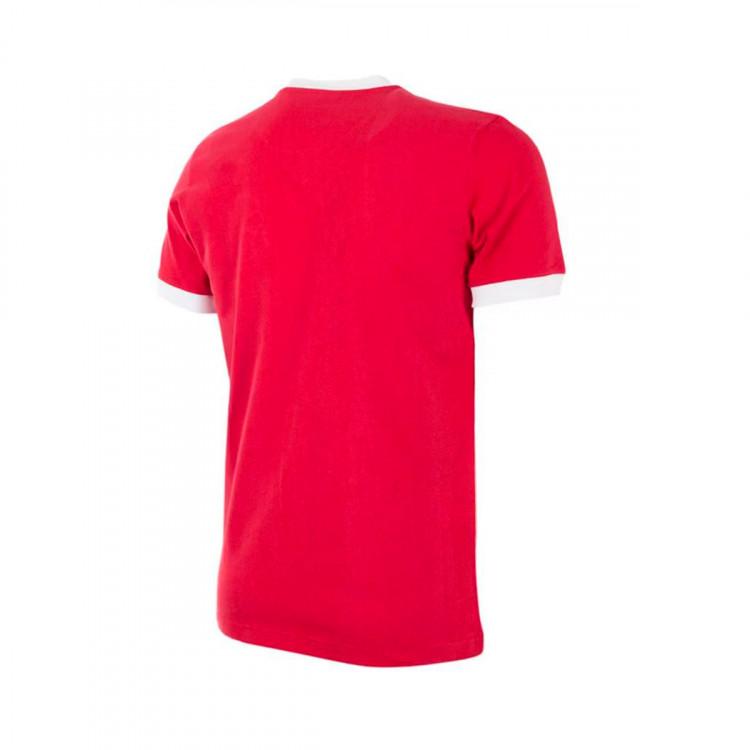 camiseta-copa-sl-benfica-1974-75-retro-football-shirt-red-1.JPG