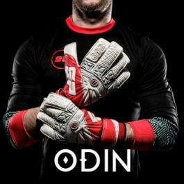 SP 2017 Odin II Boreal gloves