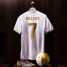 WELCOME HAZARD